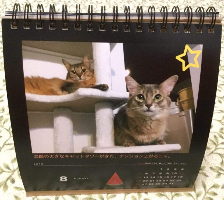 写真はフォトブックの卓上カレンダー